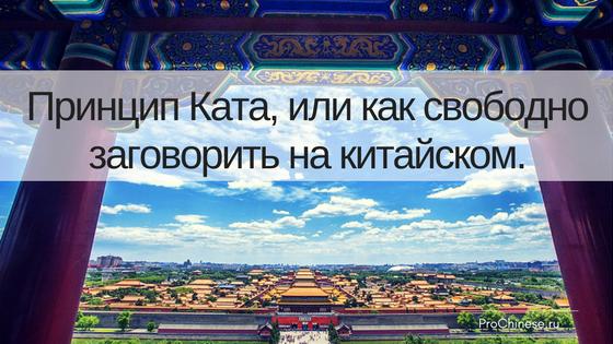 princip-kata